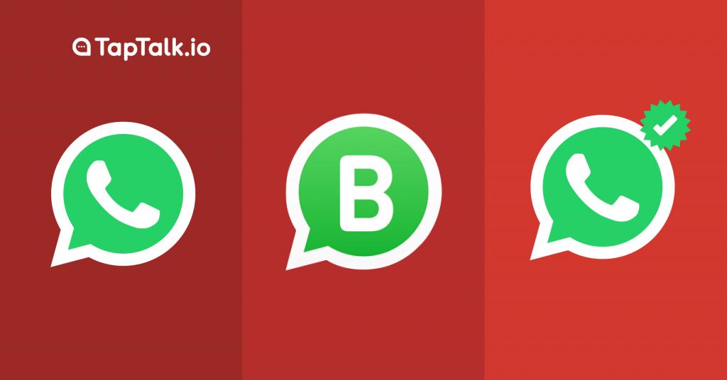 WhatsApp biasa, WhatsApp Business dan WhatsApp Official